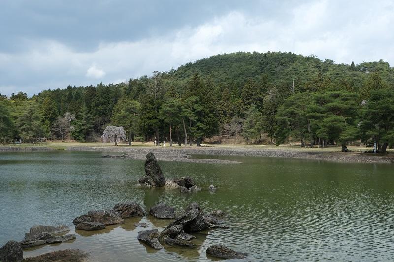 毛越寺大泉ヶ池の写真